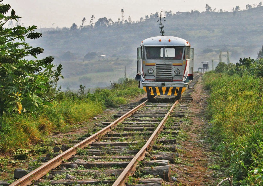 ye train jdb
